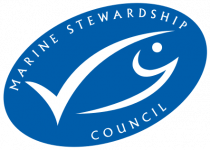 msc-logo-standalone